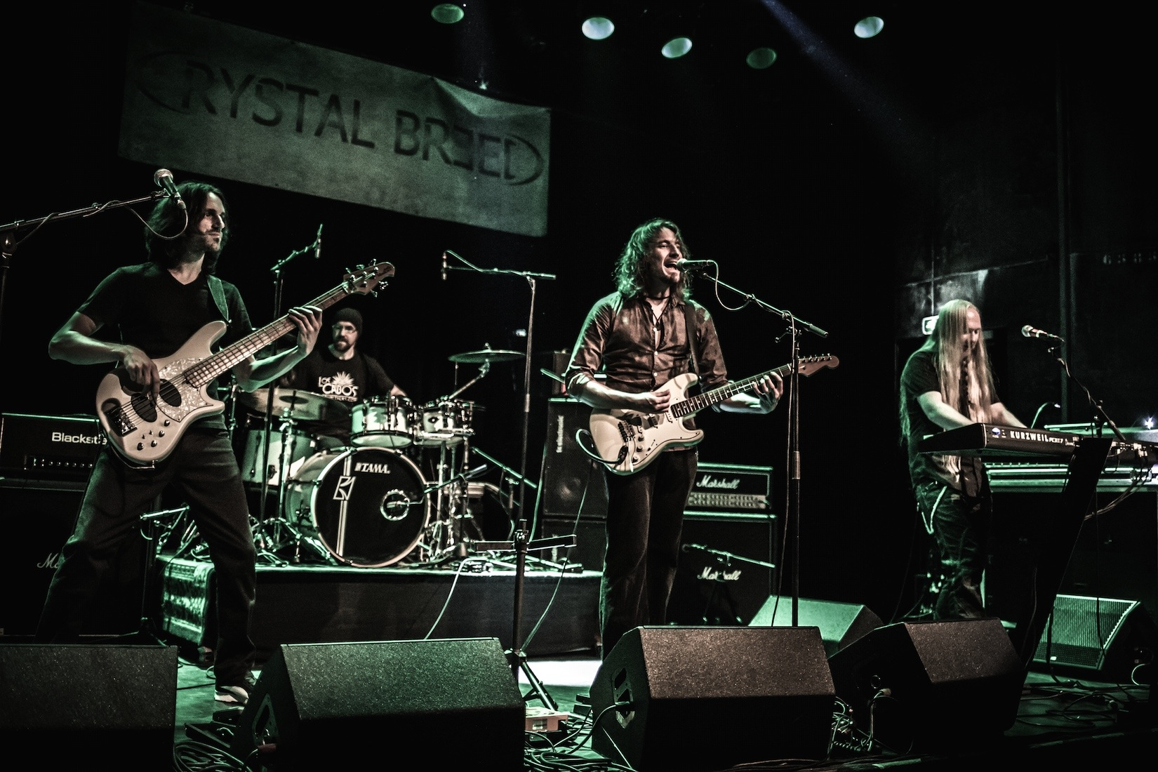 crystal-breed-weert-de-bosuil45